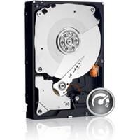 """Tvrdi disk 1000.0 GB WESTERN DIGITAL Caviar Black, WD1003FZEX, SATA3, 64MB, 7200okr./min, 3.5"""", za desktop"""