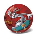 Lopta IAL162565, Looney Tunes, Zekoslav Mrkva, 23cm