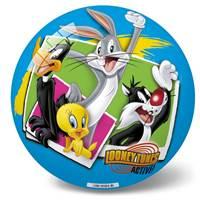 Lopta IAL162633, Looney Tunes, plava, 23cm