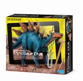 Kreativni set 4M, AR Wonder, Dinosaur DNK, Stegosaur