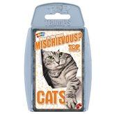 Društvena igra TOP TRUPMS, Cats, mačke