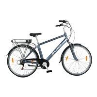 "Električni bicikl XPLORER Silver Line, kotači 28"", srebrni"