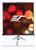 Platno za projektor ELITE SCREENS, 170 x 127 cm, 4:3, stalak