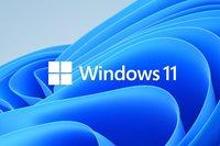 MICROSOFT Windows 11 Home, 64-bit, Engleski, OEM, DVD, KW9-00632