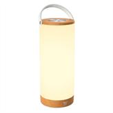 Prijenosna LED svjetiljka TAOTRONICS TT-DL23